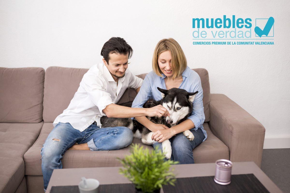 ¿Cómo elegir la mejor tapicería para el sofá si tienes mascota?